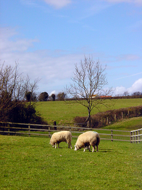 Court Farm, Banwell