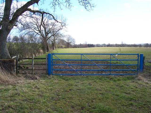 Blue gate and beck.