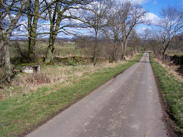 Road to Hutton Grange with curiosity on left