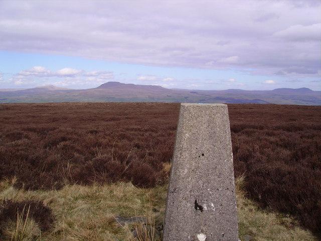 Trig Pillar Burn Moor