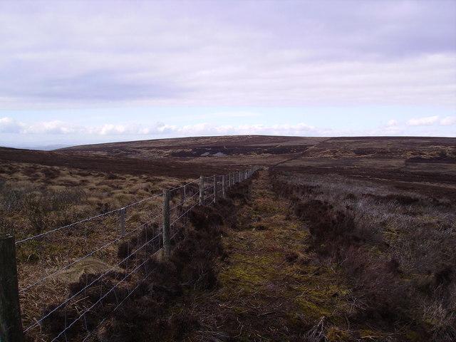 Fence overBurn Moor