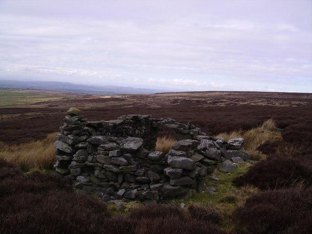 Shelter Lythe Fell