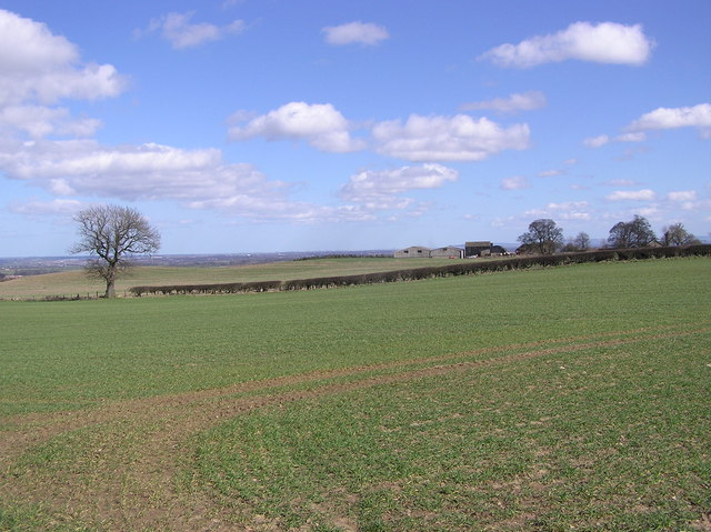 Looking East over Bracken House  with Teesside on the horizon.