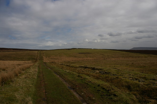The track to Bradford Fell and Tagglesmire
