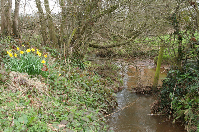 Kentisbeare: leat to Newland Farm