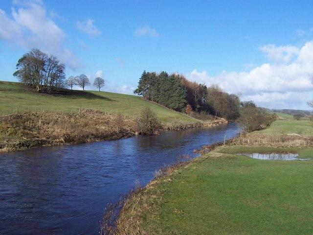 River Ribble and Old Close Plantation