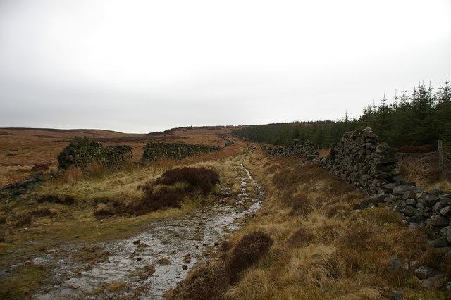 Old road, Grindleton Fell