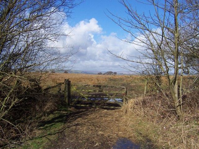 Gate onto Hyles Moor