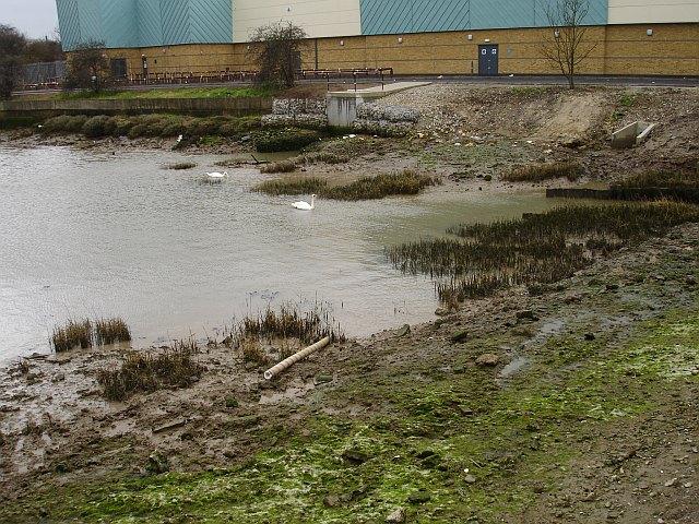 Muddy creek in Strood
