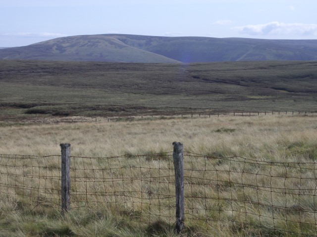 Dundreich fences