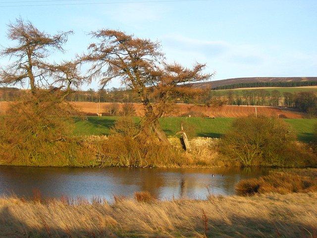 Pond, Castle Mains