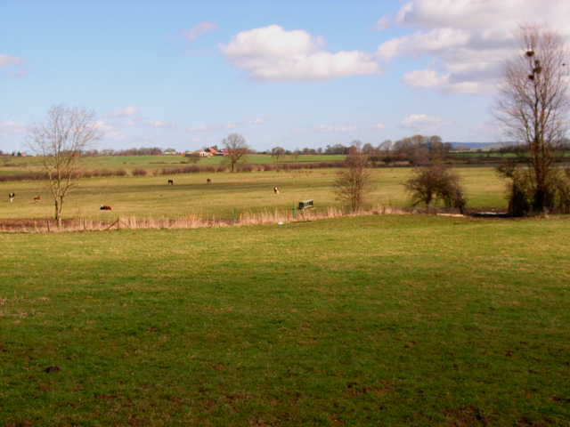 View north-east from Bramper Farm