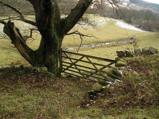 Gate to Cae Mawr