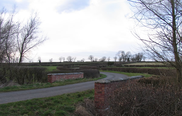Gaddesby Lane looking towards Frisby on the Wreake
