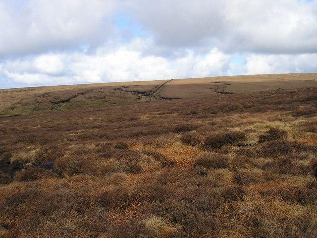 Barley Moor