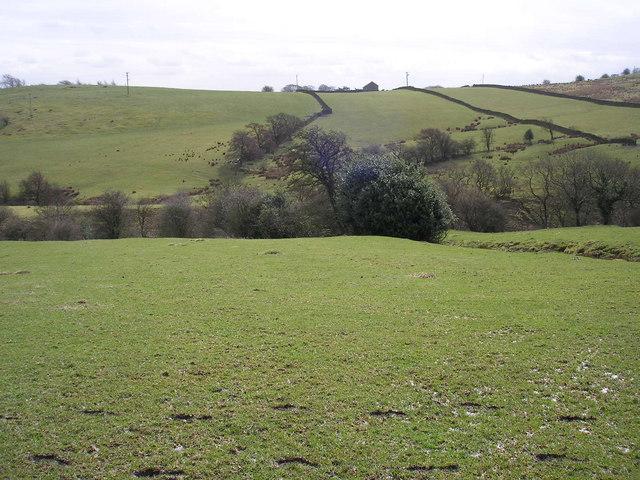 Farmland near Blacko