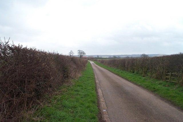 Elma Lane, Holbeck