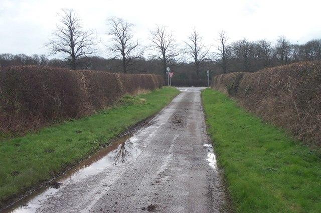Lane near Holbeck Woodhouse