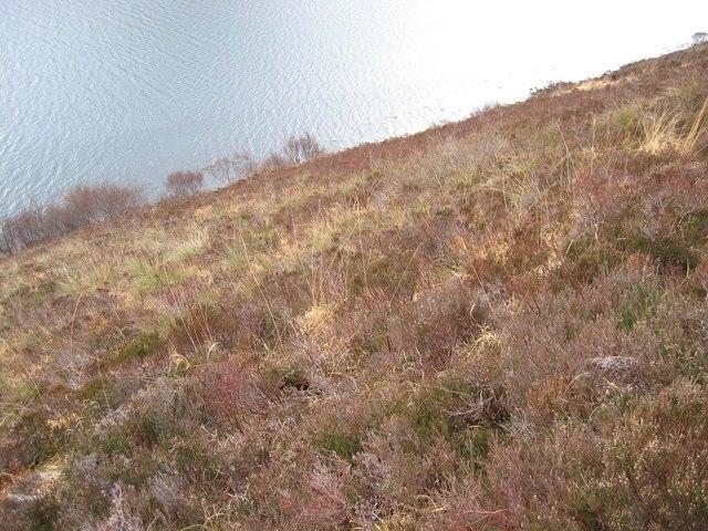North Shore of Loch Ainort