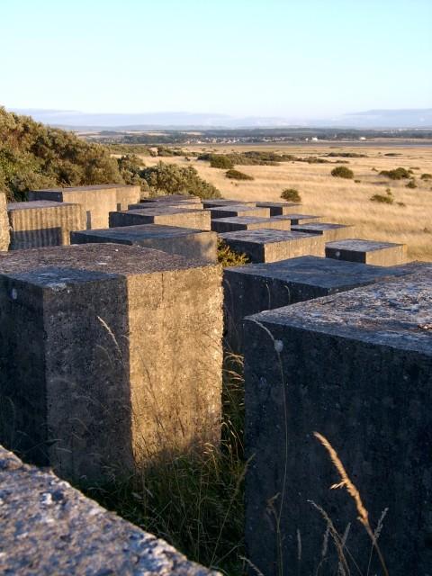 Tank Barriers