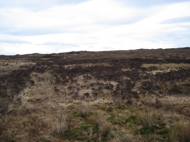 Moorland South of Breakish