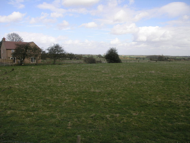 House and Field