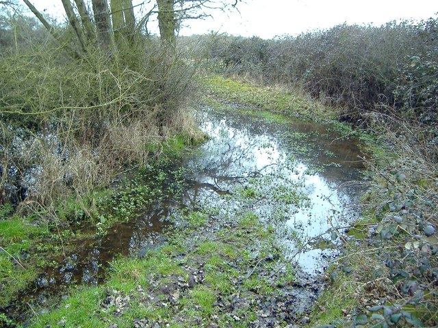 Walking in Cheshire - track that thinks it's a pond