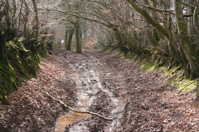 Huntsham: possible course of Roman road