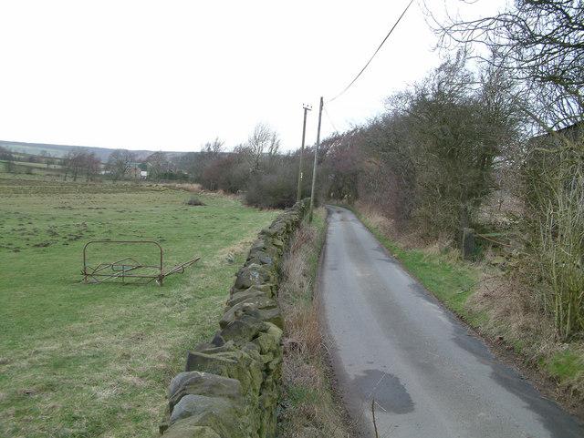 Harewood Moor.