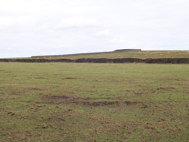 Upland Pastures, Knotts Hill