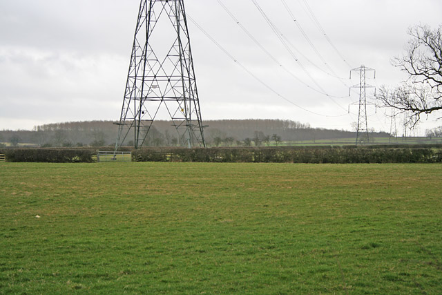 Pylons near Ashby Pastures