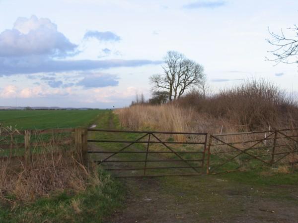 Farm track off Gaddesby Lane