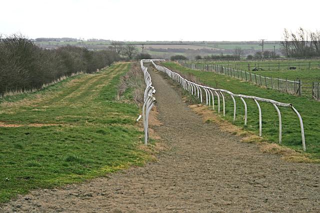 Gallop at Highfields Farm