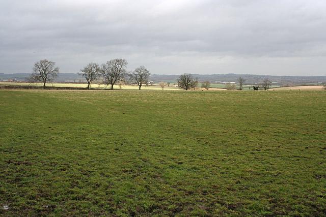 Countryside near Thorpe Satchville