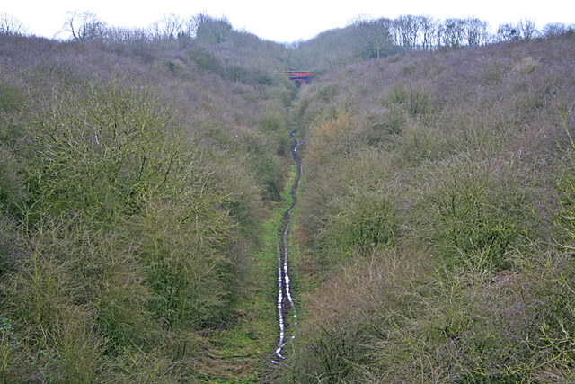 Old Railway Cutting near Thorpe Satchville