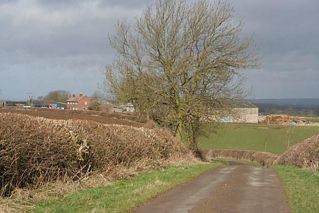 Salter's Hill Farm