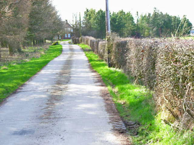 The driveway up to Southwood, near East Cowton