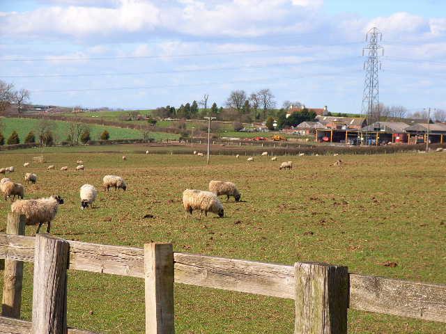Hunter's Hill Farm, Danby Wiske
