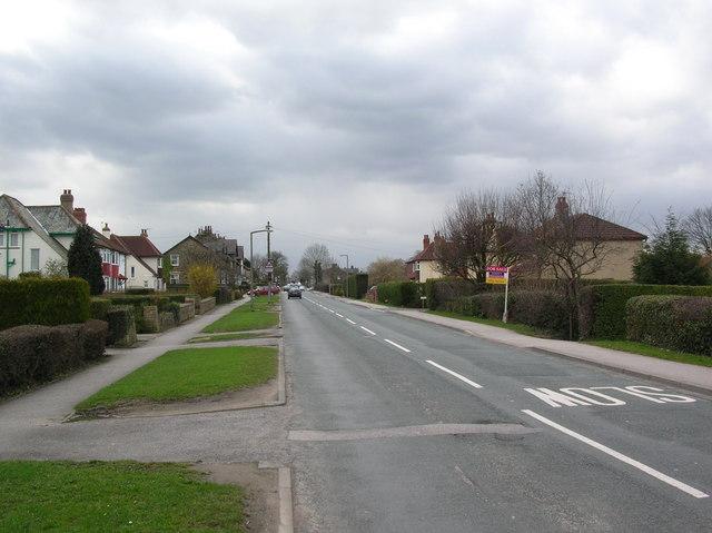 Bilton Lane