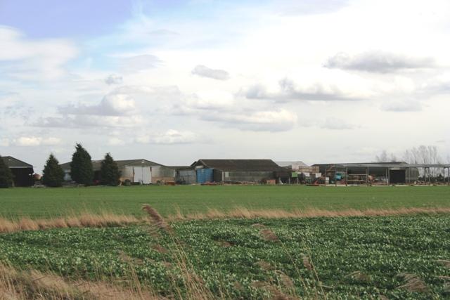 Farm on Morton Drove, Morton Fen