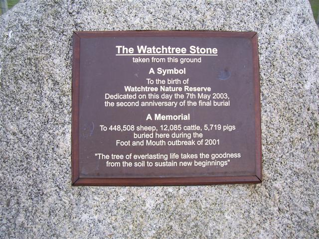 The Watchtree Stone.