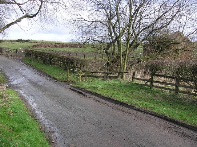 Ford : Dalton Beck : Eryholme Lane.