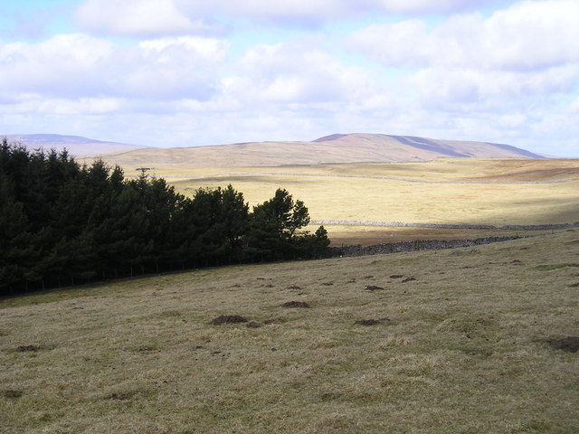 View north west from Conistone Turf Road