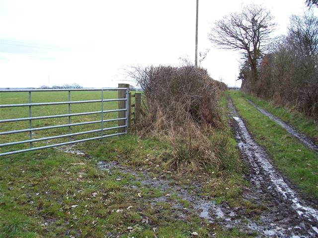 Footpath and field gate.