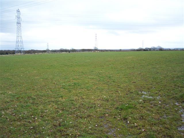 Waterlogged farmland.