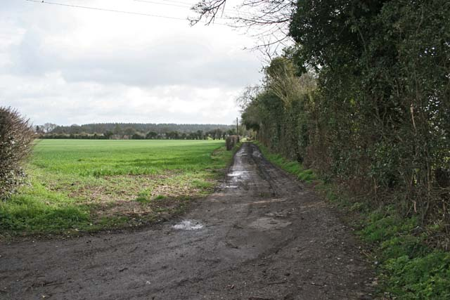 Track running east from Grateley Village