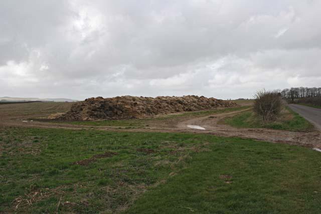Rotting Haystack