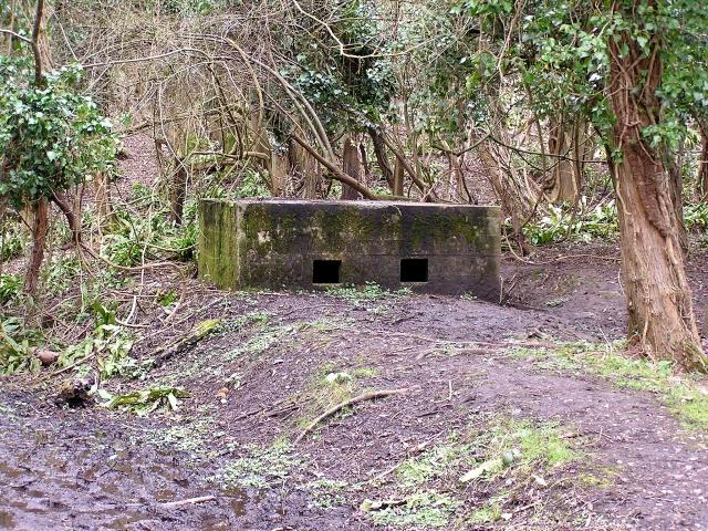 Pill box, Welsh Bicknor