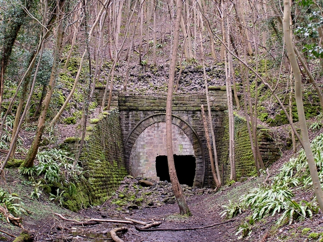 The Old Railway Tunnel under Coppett Hill