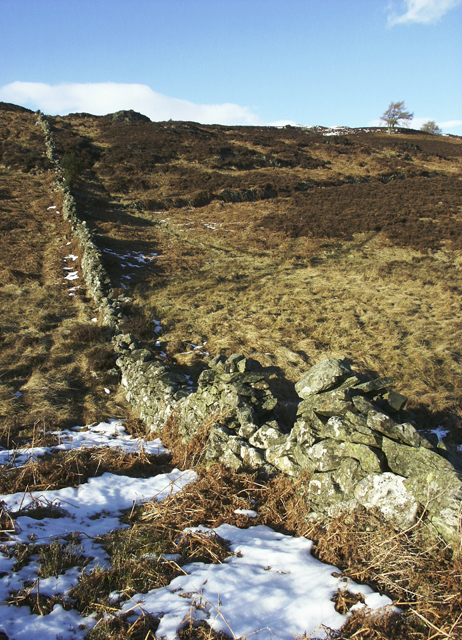 Moorland above Braincroft, near Comrie, Perthshire